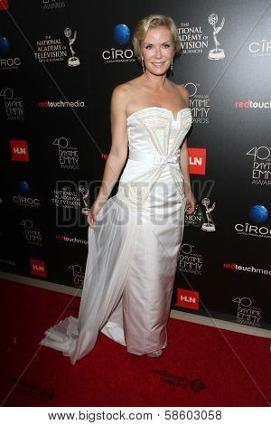 Katherine Kelly Lang at the 40th Annual Daytime Emmy Awards, Beverly Hilton Hotel, Beverly Hills, CA 06-16-13