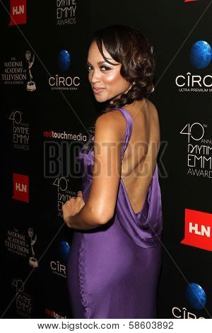 Sal Stowers at the 40th Annual Daytime Emmy Awards, Beverly Hilton Hotel, Beverly Hills, CA 06-16-13