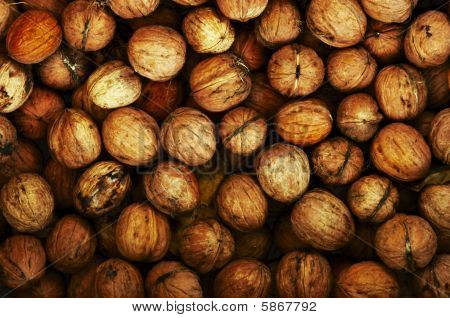Shot of the walnuts - autumn fruits poster