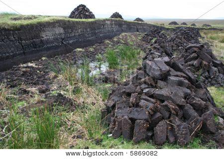 Peat bogs