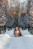 Winter holiday-walk in carriage with white horse poster