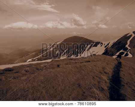 Carpathian mountains 15 under snow in spring