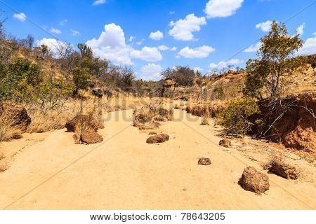 Dry Riverbed Landscape On A Warm Sunny Day