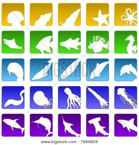 Twenty five sealife icons