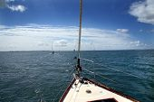 Sunny sailing in calm waters on a sunny day poster
