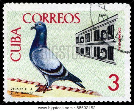 Vintage  Postage Stamp. Birds. Coops.