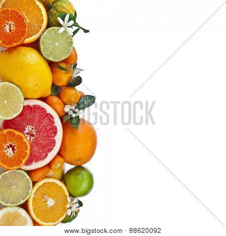 Beautiful citrus fruits of  lemon, orange, grapefruit, lime. isolated on white background