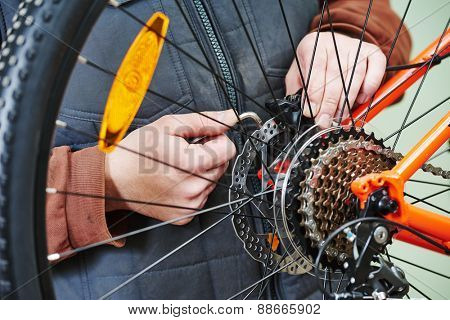Mechanic serviceman repairman installing assembling or adjusting bicycle gear on wheel in workshop