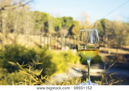 Glass Of Wine, Landscape Background