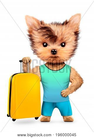 Funny animal in t-shirt and shorts holding luggage. Concept summer holidays, travel vacation concept. Realistic 3D illustration.