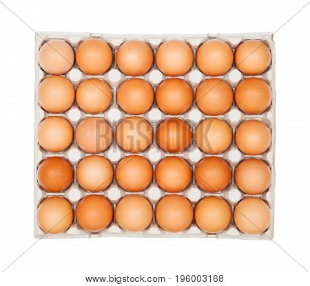 Full egg tray isolated on white background close-up top view