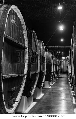 Old wine wooden barrels in a wine cellar