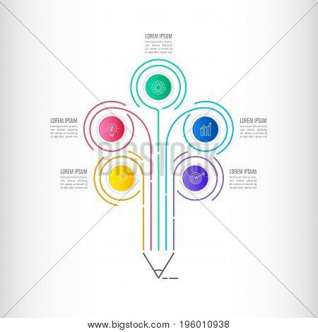 Timeline Infographic Business Concept With 5 Options.