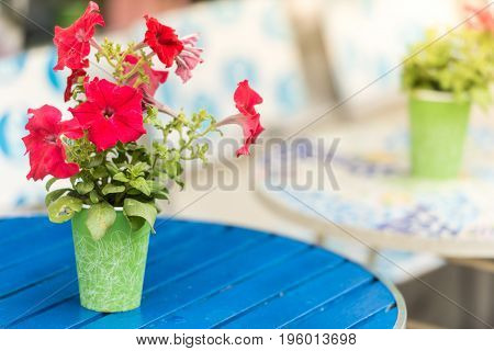 Flower pot on table in cafe. Cozy street restaurant in Sweden Scandinavia Europe.