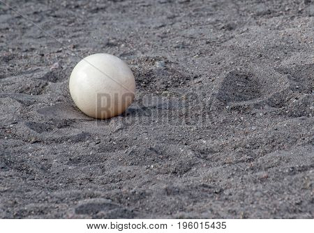 Ostrich egg on sand at Ostrich farm.
