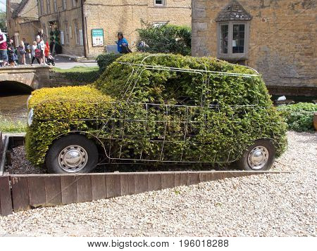 topiary Mini. the old classic mini becomes a topiary work of art