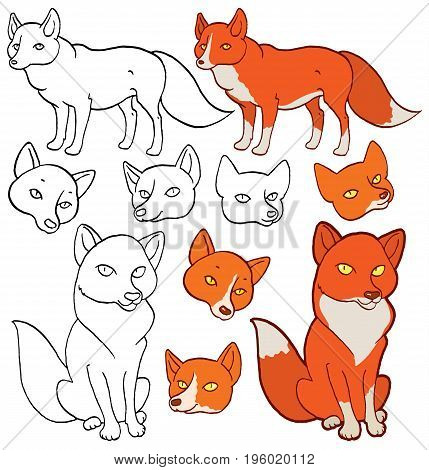 set of hand drawing images of cartoon foxes