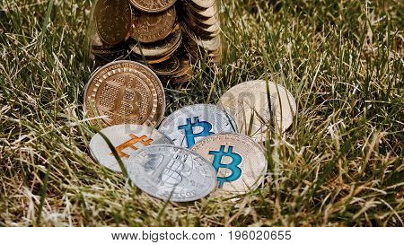 Silver Bitcoins In Grass