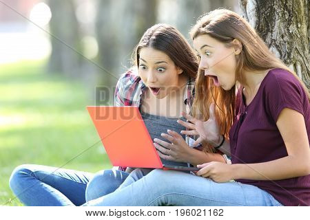 Amazed teens finding opportunities on line in a red laptop sitting on the grass outside in a park
