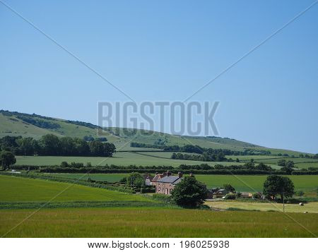 Beautiful landscape of grass field, blue sky and green environment. Natural background, backdrop. Nature landscape background concept.