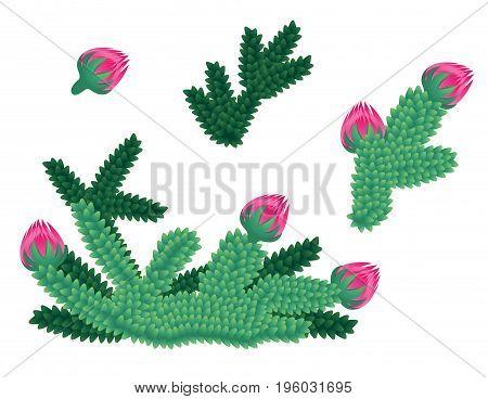 Green underwater plants - vector illustration set
