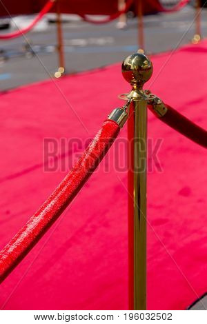 Way To Success On The Red Carpet (barrier Rope)