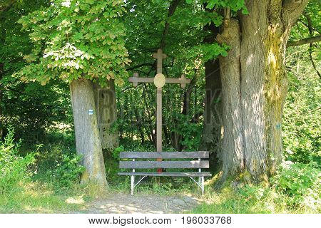 old cross and wooden bench among the trunks of big old trees in summer, Beskydy mountains, Czech republic