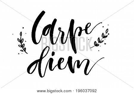 Carpe Diem. Inspirational Quote. Handwritten Text. Modern Calligraphy.