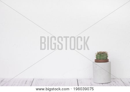 Stock Photography Retro White Wall Wooden Vintage Paint Floor And Cactus Cement Pot