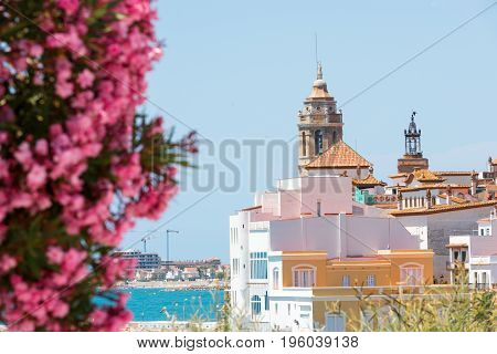 Blooming Oleander Against The Background Of The Historical Center In The Sitges, Barcelona, Cataluny