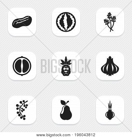 Set Of 9 Editable Cooking Icons. Includes Symbols Such As Garlic, Duchess, Tropical Fruit And More