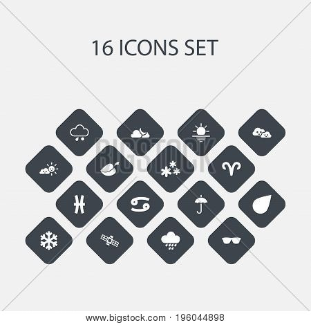 Set Of 16 Editable Climate Icons. Includes Symbols Such As Snowflakes, Eyeglasses, Plant And More