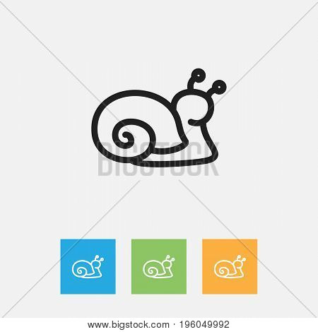Vector Illustration Of Zoo Symbol On Snail Outline