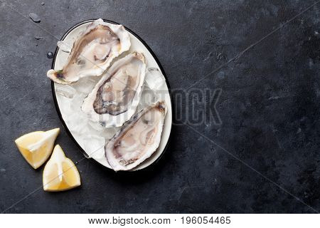 Opened oysters and lemon on stone table. Top above with copy space