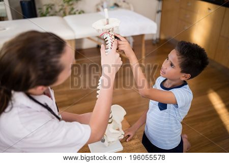 High angle view of boy and female therapist pointing at artificial spine in hospital ward