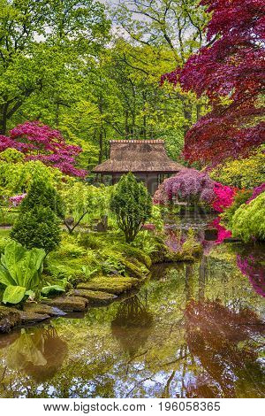 Amazing Picturesque Scenery of Japanese Garden with Asian Zen Sculptures on Background in the Hague (Den Haag) in the Netherlands Straight After the Rain. Vertical Image