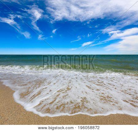 summer scene over sea shore