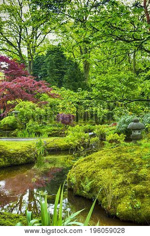 Travel Destinations. Picturesque Scenery of Japanese Garden in The Hague (Den Haag) in the Netherlands. Vertical Image composition