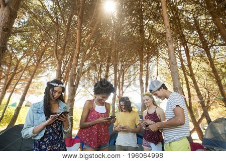 Happy friends using mobile phones against trees at campsite