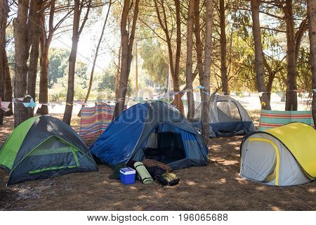 Tents on field at campsite