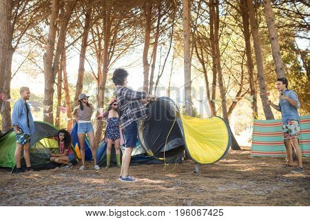Young friends setting up their tents together at countryside