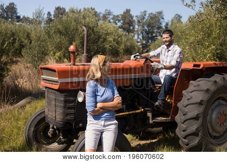Couple interacting in olive farm on a sunny day