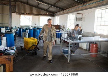 Attentive workers working in factory