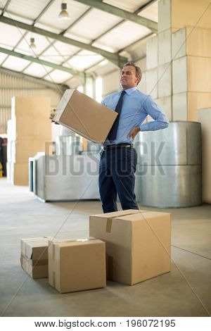 Manager suffering from back pain while holding heavy box in factory