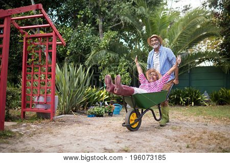 Happy senior man carrying woman in wheelbarrow while gardening at yard