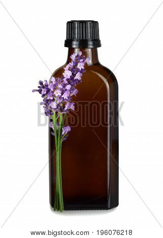 Lavender oil in the bottle isolated on white background