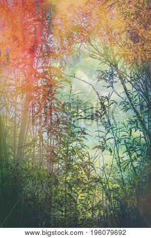 Artistic background with bamboo leaves in the forest
