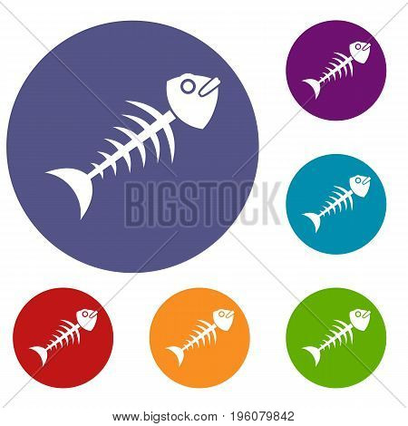 Fish bone icons set in flat circle red, blue and green color for web