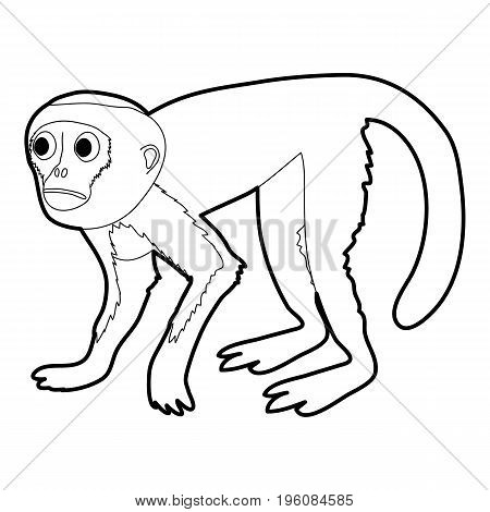 Capuchin icon in outline style isolated on white vector illustration