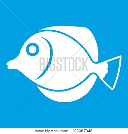 Tang fish, Zebrasoma flavescens icon white isolated on blue background vector illustration